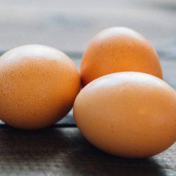 Geen probleem met de eieren bij Bidfood De Clercq